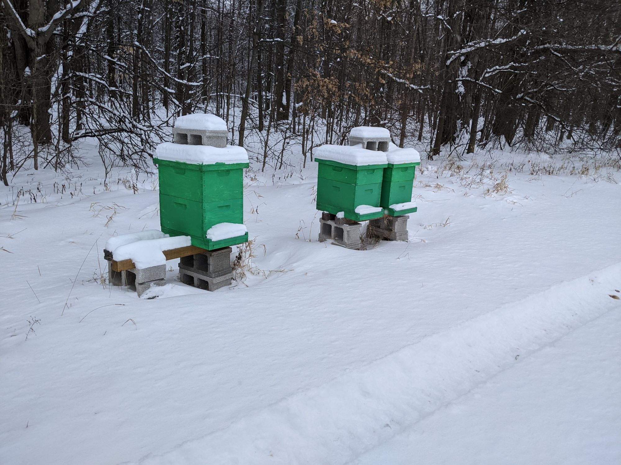 Chellinsky Apiary and Meadery